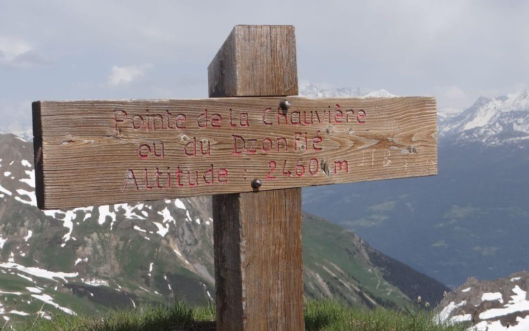 POINTE DU DZONFIE 2455 m
